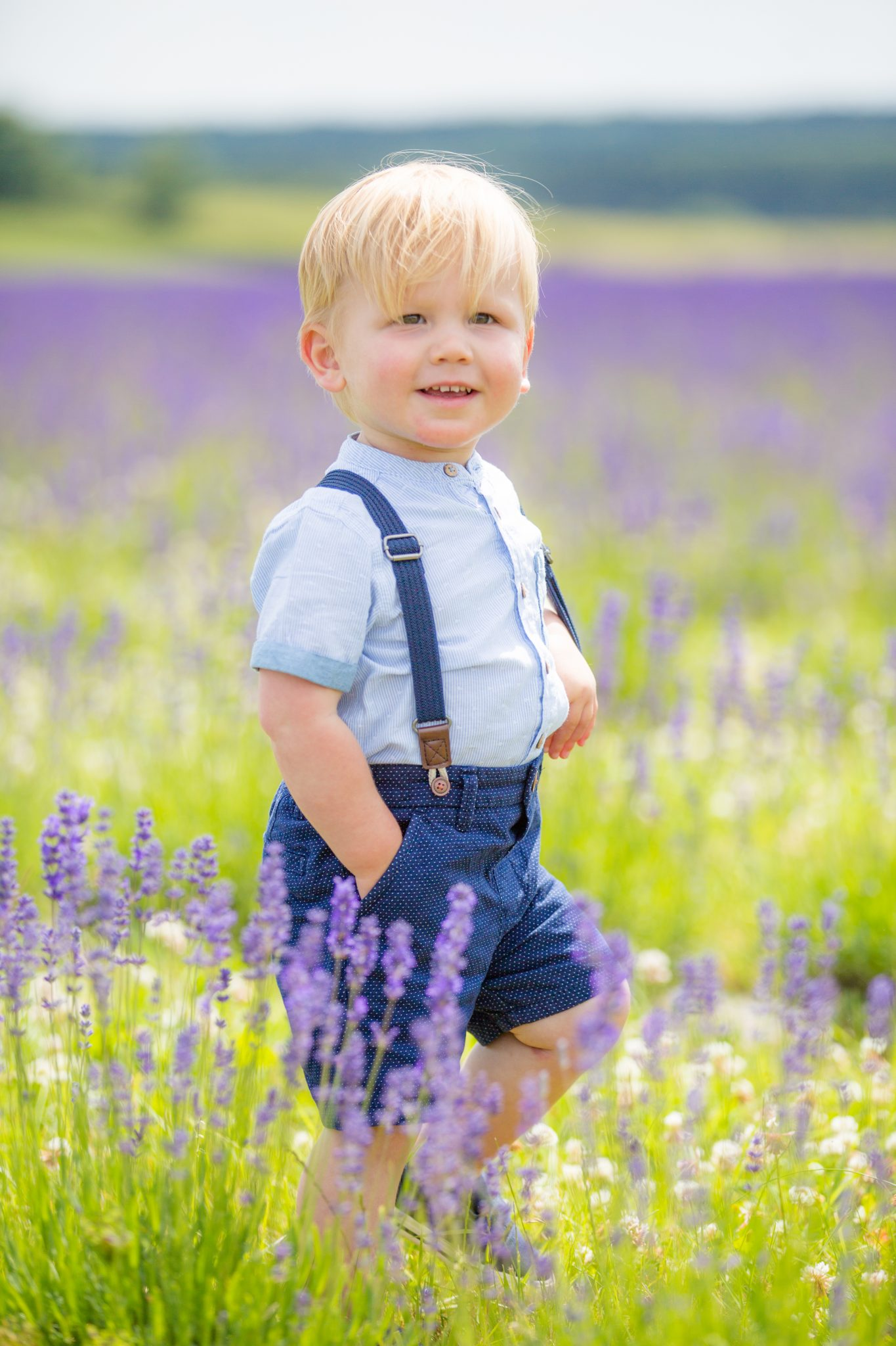 The Lavender Fields Family Shoot day.