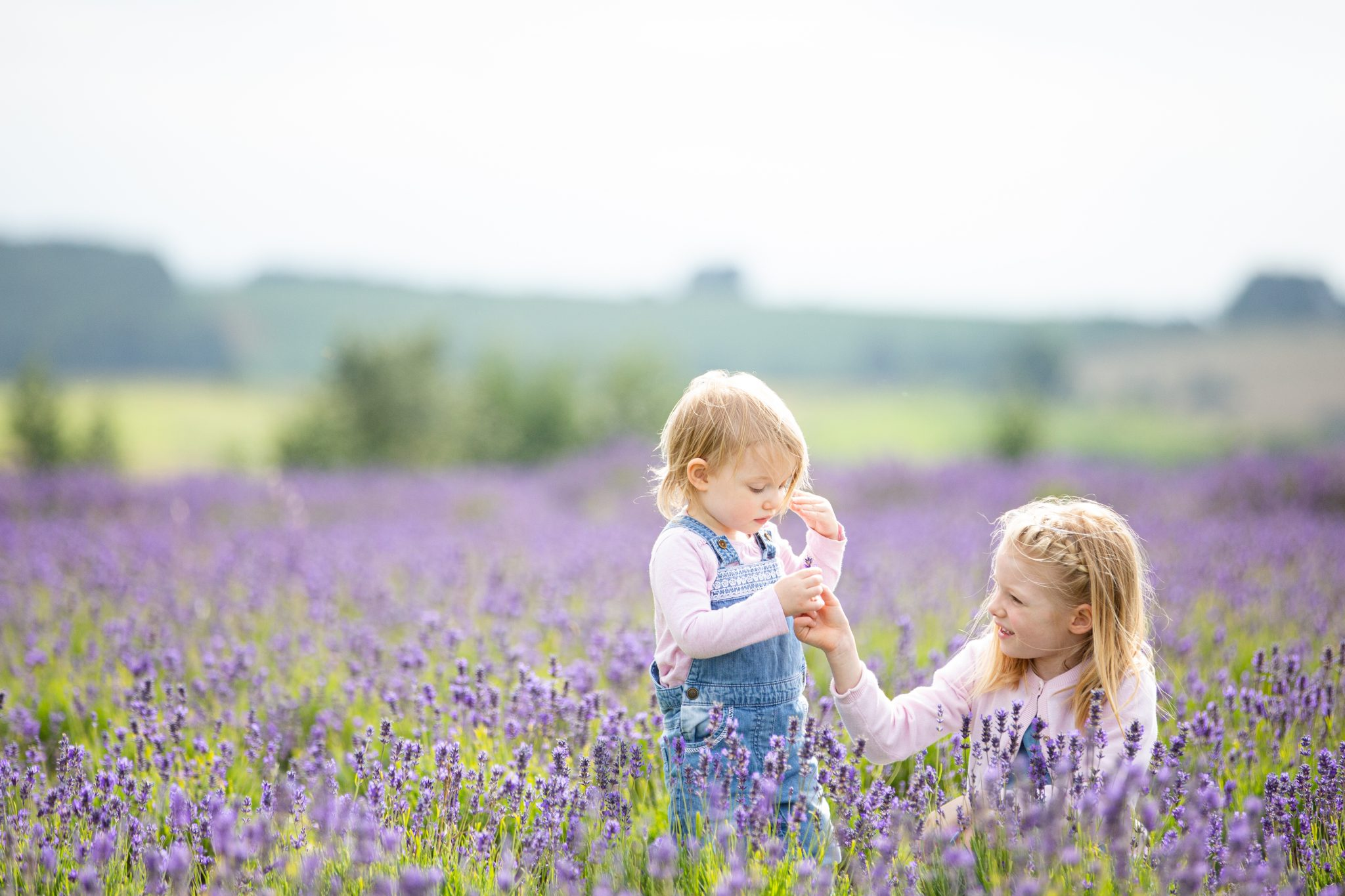 Family Shoot at Lavender Fields.