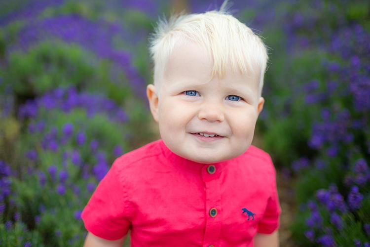 Lavender Fields Family Photoshoot